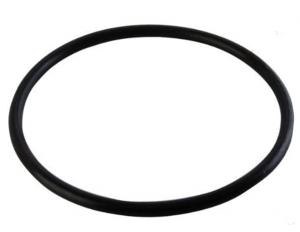Hayward AXW542 W530/W560 Leaf Canister Lid O-Ring