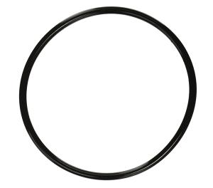 Pentair 350013Z Pump Lid O-Ring